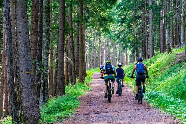 Location de vélos au camping de la Mare aux Fées à Roquefeuil